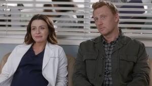 Grey's Anatomy Season 16 :Episode 13  Save the Last Dance for Me