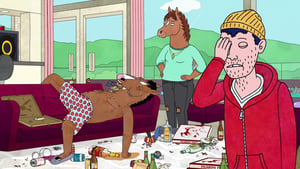 BoJack Horseman Season 4 :Episode 3  Hooray! Todd Episode!