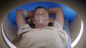 Grey's Anatomy Season 17 :Episode 3  My Happy Ending