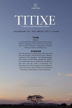 Watch Titixe Full Movie