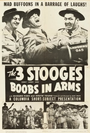 Boobs in Arms (1940)
