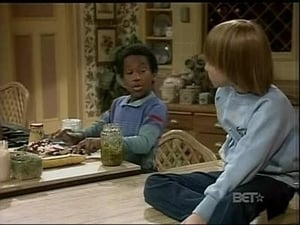 Diff'rent Strokes Season 8 :Episode 14  Sam's Big Brother