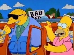 The Simpsons Season 3 :Episode 1  Stark Raving Dad