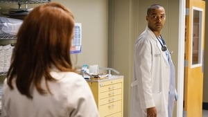 Grey's Anatomy Season 12 :Episode 11  Unbreak My Heart