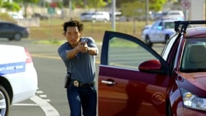 Hawaii 5-0 saison 1 episode 14