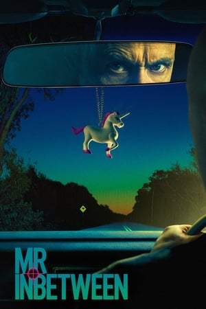 Watch Mr Inbetween Full Movie