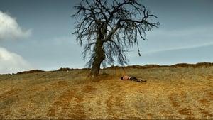 A Árvore dos Frutos Selvagens Legendado Online