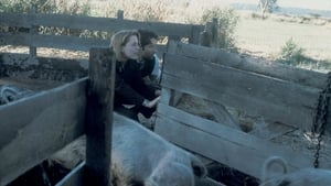 The X-Files Season 11 Episode 2