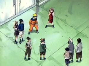 Naruto Season 1 :Episode 23  Genin Takedown! All Nine Rookies Face Off!