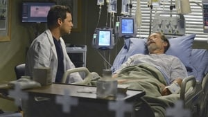 Grey's Anatomy Season 10 Episode 13