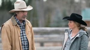 Heartland Season 10 : Forest For The Trees