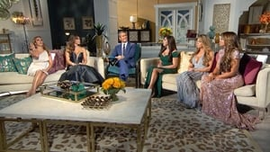 The Real Housewives of New Jersey: 7×17