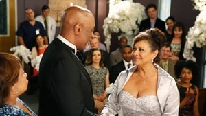 Grey's Anatomy Season 11 :Episode 24  You're My Home