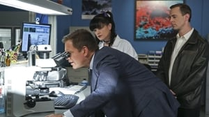 NCIS Season 13 :Episode 7  16 Years