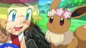 Pokémon Season 18 :Episode 41  A Frolicking Find in the Flowers!