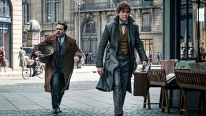 Fantastic Beasts: The Crimes of Grindelwald 2018 Full Movie Hindi Dubbed Watch Online HD
