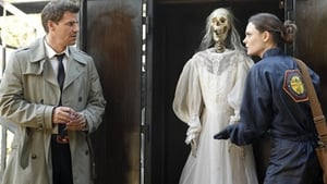 Bones Season 5 : The Witch in the Wardrobe