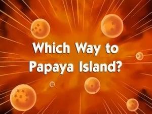 Hacia la isla de las papayas