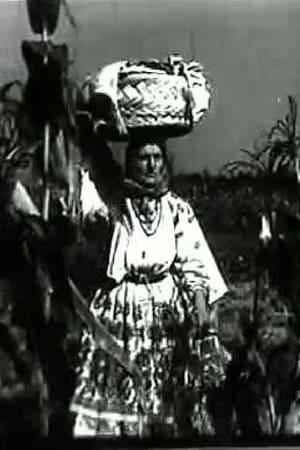 A Day at Turopolje Community (1933)