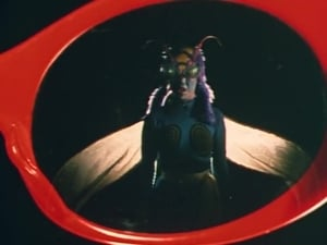 Kamen Rider Season 1 :Episode 8  Strangeness! Bee Woman