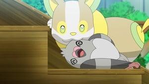 Pokémon Season 23 :Episode 29  Electrifying Jealousy! Wanpachi's Feelings
