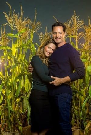 Watch A Harvest Wedding Full Movie