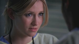 Grey's Anatomy Season 6 :Episode 14  Valentine's Day Massacre