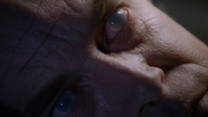 The X-Files Season 1 : Young at Heart