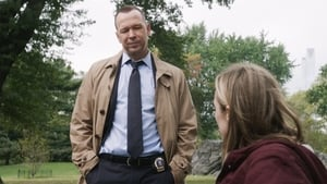Blue Bloods – Sangue Azul: 7×8