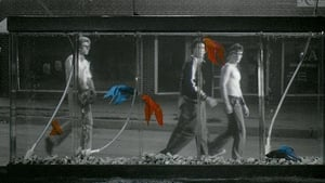 Watch Rumble Fish (1983)