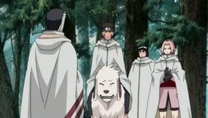 Naruto Shippūden Season 10 :Episode 212  Sakura's Resolve