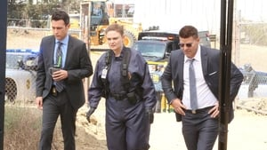 Bones Season 12 : The New Tricks in the Old Dogs