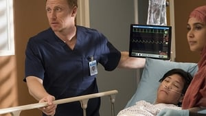 watch Grey's Anatomy online Ep-13 full