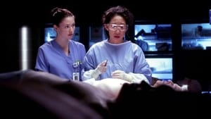 Grey's Anatomy Season 4 :Episode 14  The Becoming