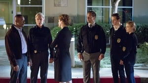 NCIS Season 13 :Episode 4  Double Trouble