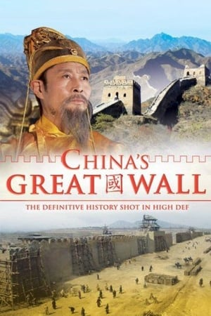 China's Great Wall (2007)