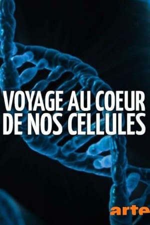 Voyage au cœur de nos cellules– Nom de code: Protéome