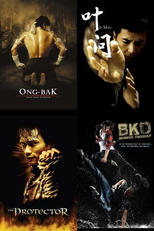 top-10-asian-movies-with-incredible-fight-scenes poster