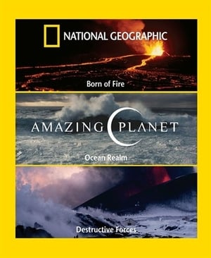 National Geographic Amazing Planet Ocean Realm