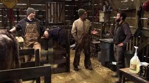 The Ranch saison 1 episode 16
