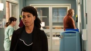 Grey's Anatomy Season 15 :Episode 22  Head Over High Heels