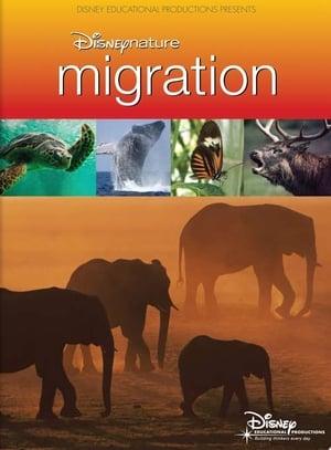 Disneynature Migration