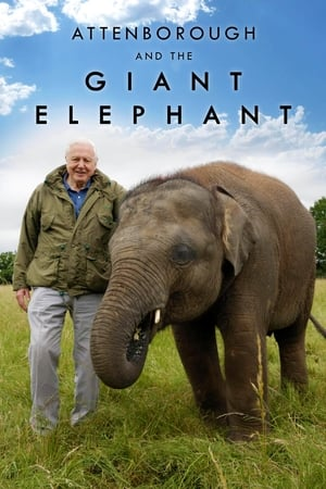 Attenborough and the Giant Elephant