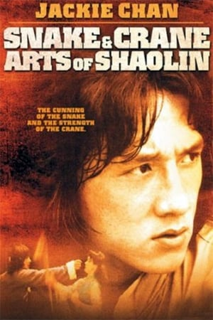 Watch Snake and Crane Arts of Shaolin Full Movie
