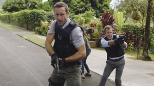 Hawaii Five-0 Season 8 :Episode 21  Ahuwale Ka Nane Huna (The Answer To The Riddle Is Seen)