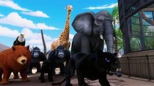 Miraculous: Tales of Ladybug & Cat Noir Season 1 : Animan