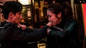 The Villainess Streaming HD