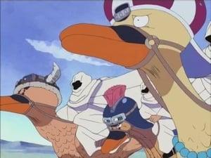 ¡Lucha final en el acantilado! ¡Dharma-san ha caído!