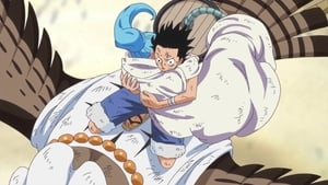 One Piece Season 20 :Episode 884  I Miss Him! Vivi and Rebecca's Sentiments!