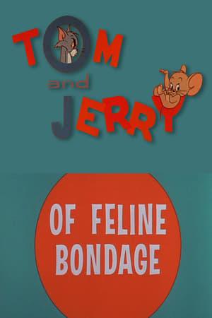 La bonne fée de Jerry